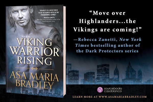viking warrior banner