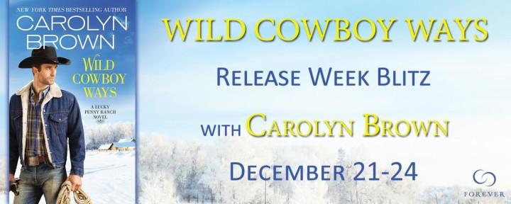 wild cowboy ways banner
