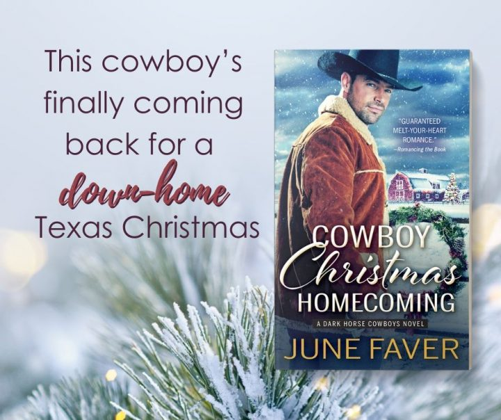 Christmas Homecoming.Giveaway Excerpt Cowboy Christmas Homecoming By June Faver
