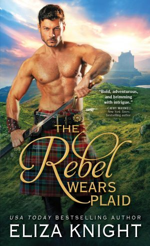 5 Copies of The Rebel Wears Plaid